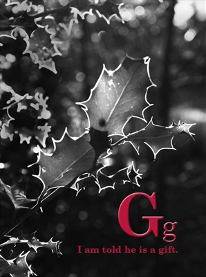 G by Jenny George, Photography