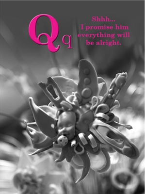 Q by Jenny George, Photography